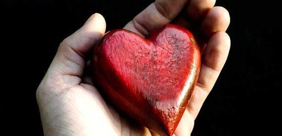 Израильские ученые: разбитое сердце способно на самоизлечение