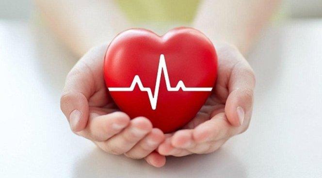 Женское сердце бьется быстрее мужского из-за гормонов