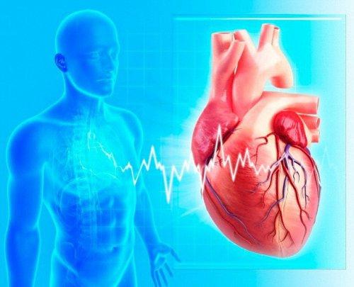 7 правил профилактики сердечной недостаточности