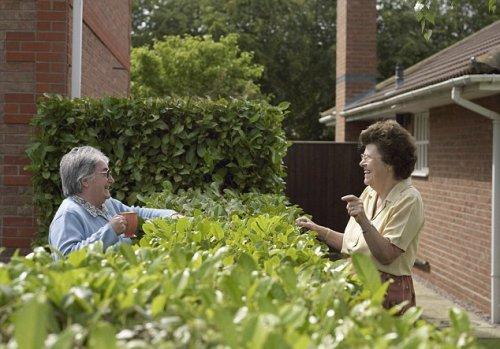 Соседи могут довести человека до инфаркта