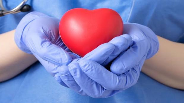 Новое устройство способно «оживлять» сердце для трансплантации