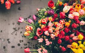 Доставка цветов в Москве или любой город на карте