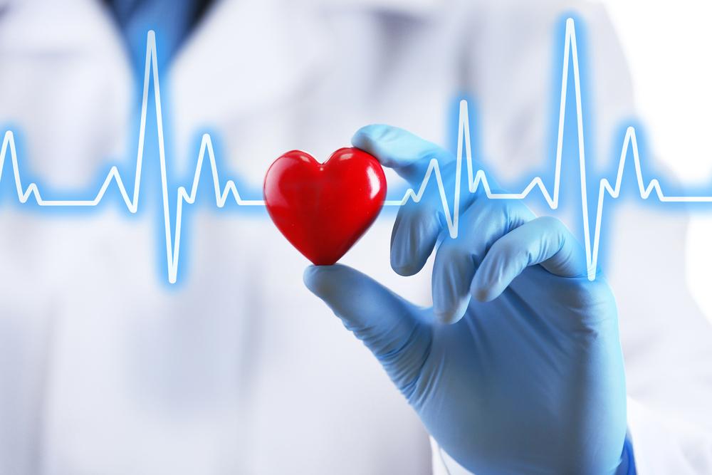 Кардиология – как не бояться и не принимать близко к сердцу