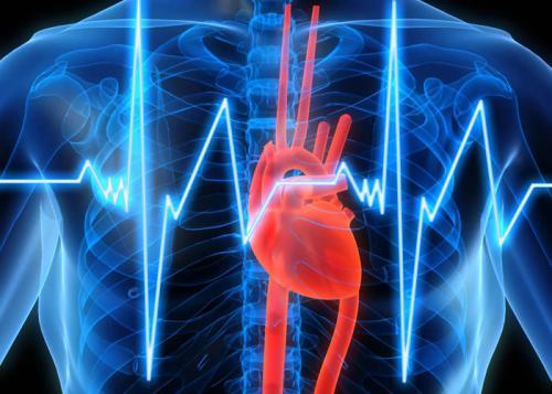 Медики раскрыли, как употребление жиров влияет на риск инфаркта