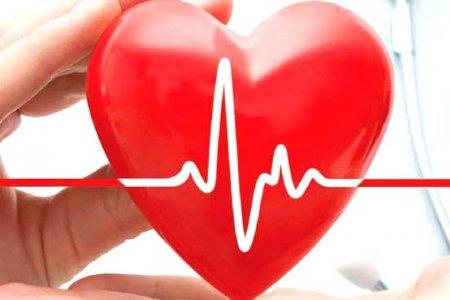 Сердце ноет. Какие тревожные сигналы посылает больное сердце?