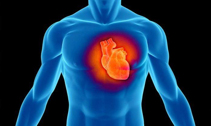 Назван продукт, помогающий снизить риск инфаркта