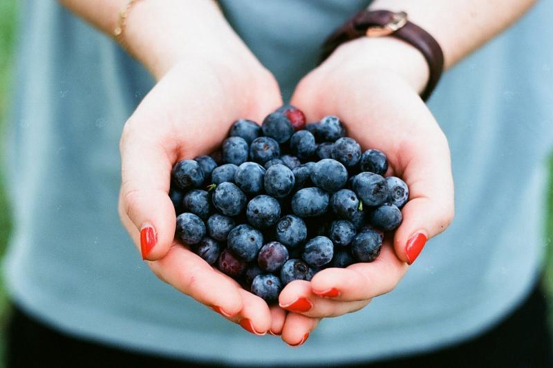Названы ягоды, снижающее кровяное давление