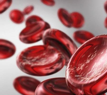 Как повысить гемоглобин в крови в домашних условиях