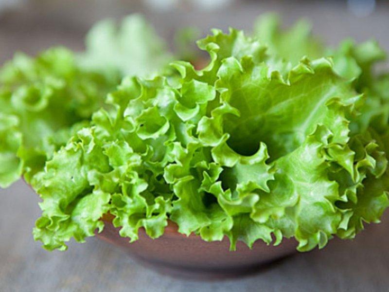 Эксперт: листовые салаты полезны для борьбы с усталостью и гипертонией