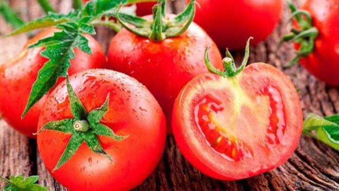 Кардиологи рассказали о вредных свойствах помидоров