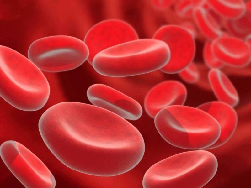 Эксперты назвали 4 симптома тромбов и продукты, защищающие от них