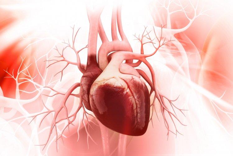 Профессор назвал признак инфаркта, который могут не заметить активные люди
