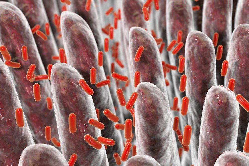 Бактерии могут участвовать в развитии диабета