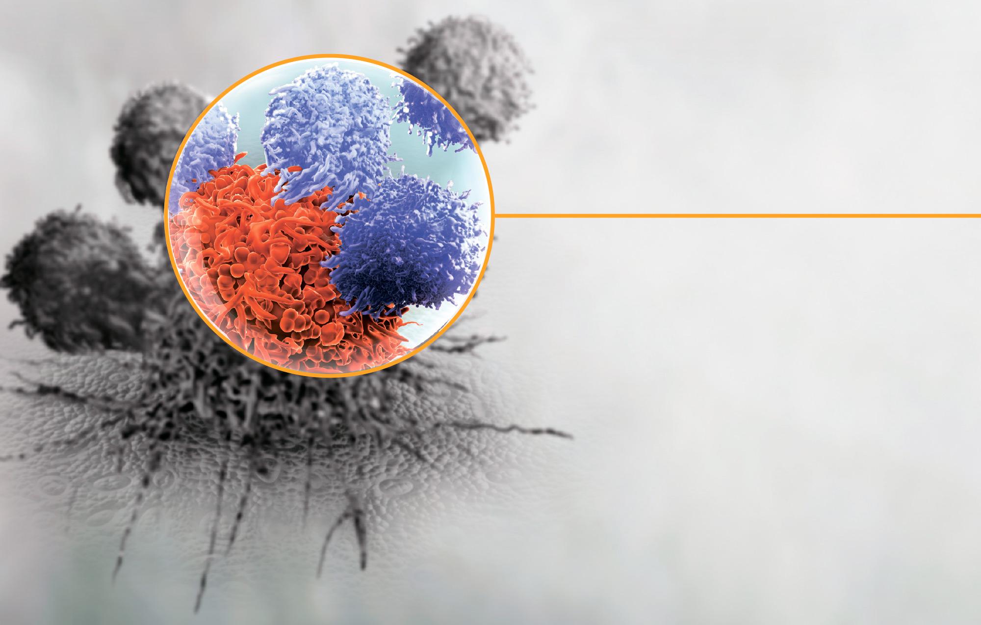 «Имбрувика Ибрутиниб» 140 мг — таргетный препарат от ряда раковых опухолей