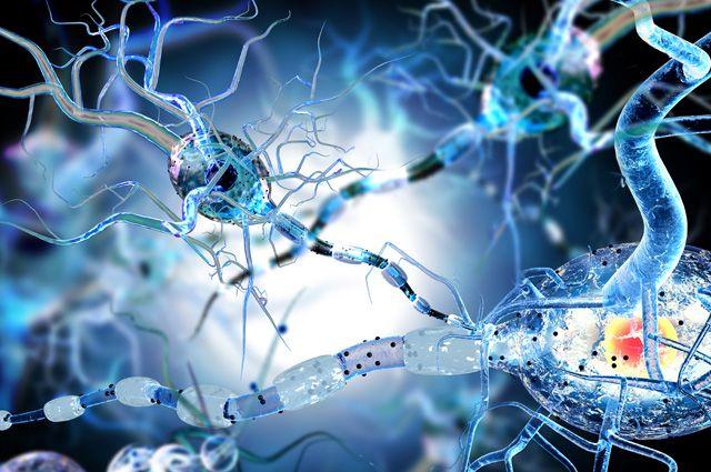 Болезнь молодых. Как заподозрить рассеянный склероз на ранней стадии?