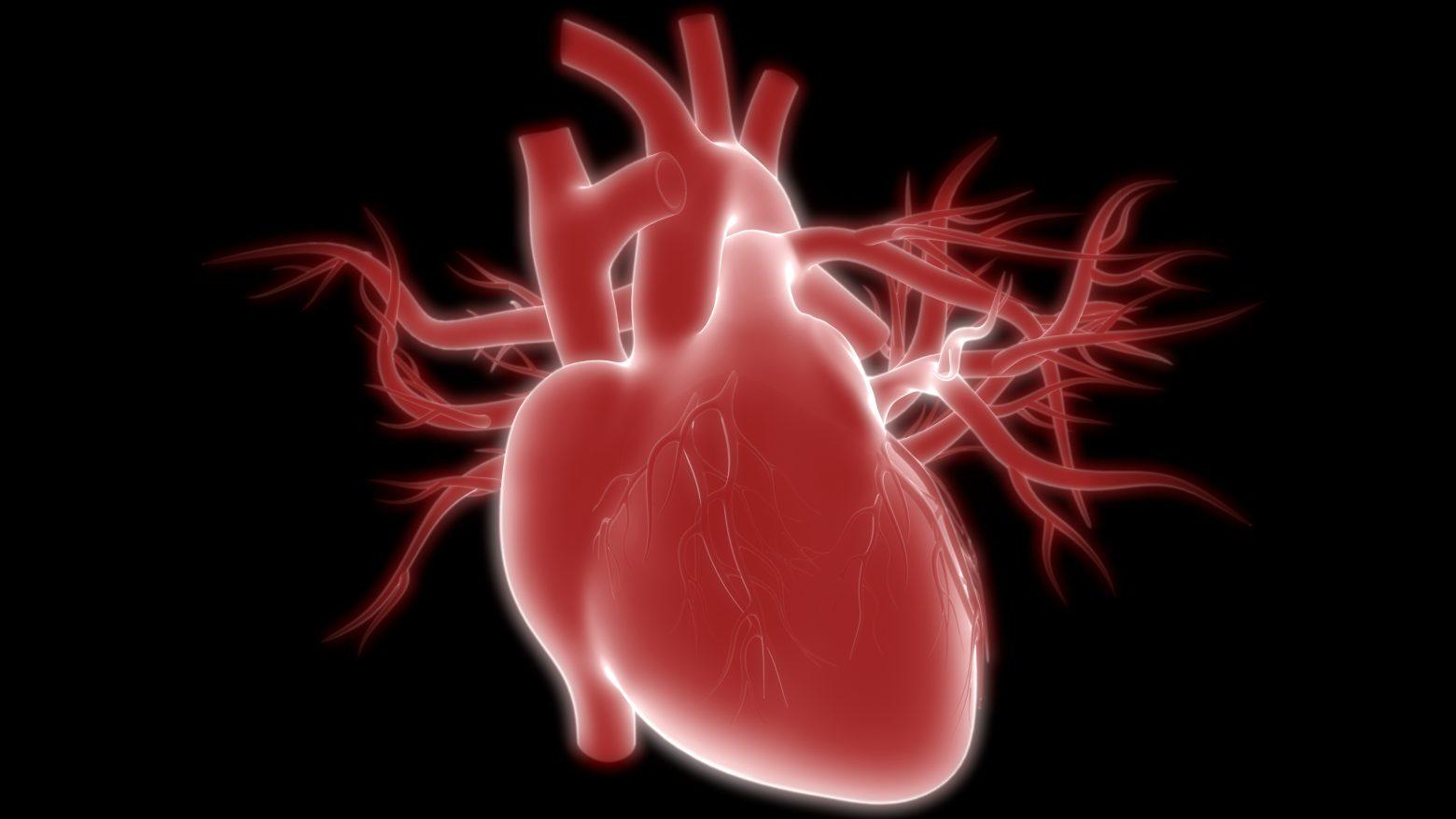 Несколько причин позаботиться о сердце