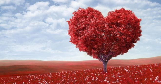 Синдром Бругада – как узнать, что сердце не в порядке?