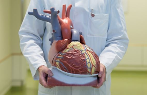 ЗОЖ после инфаркта добавляет 7 лет здоровой жизни